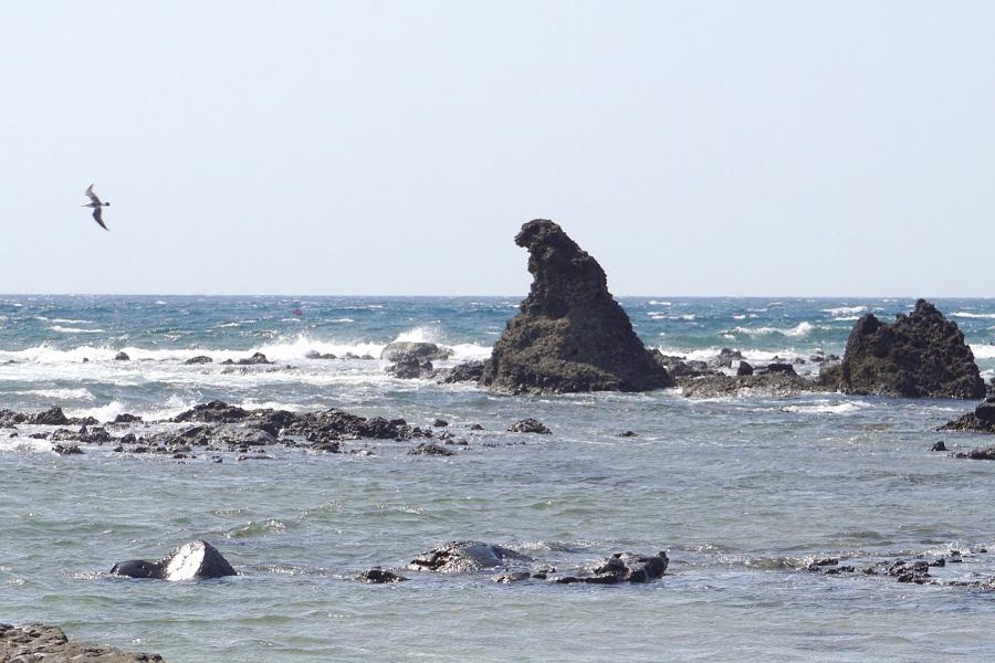 金沢大地 奥能登海水塩 クシソルト